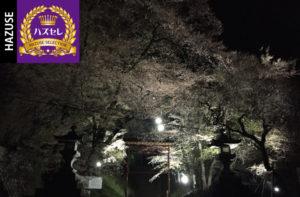 第556回ハズセレ(ニューアサヒ上飯田店)最終報告