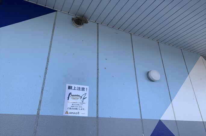 第960回ハズセレ(APULO1松本梓店)最終報告